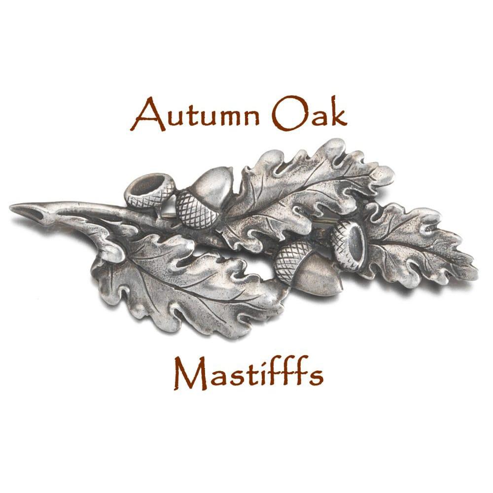 Autumn-Oak-image-1