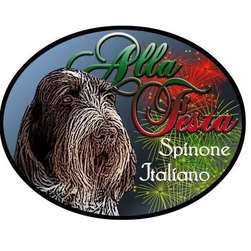 Alla Festa Spinone Italiano