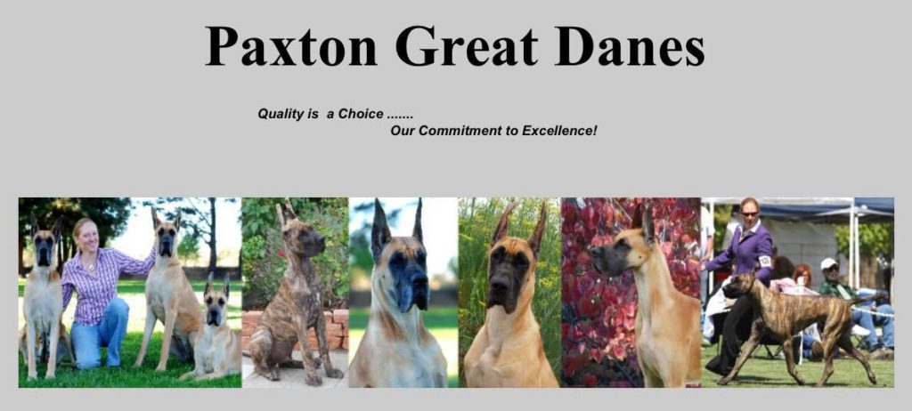 Paxton Danes