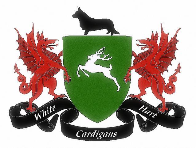 Whitehart Cardigans