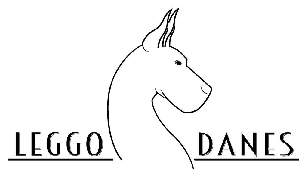 leggo danes logo 2