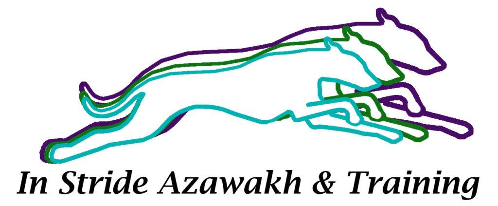 In Stride Azawakh